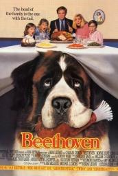 beethoven-ESCOLOFI